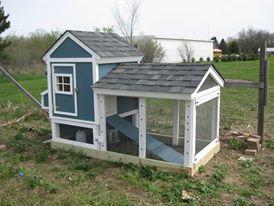First chicken coop